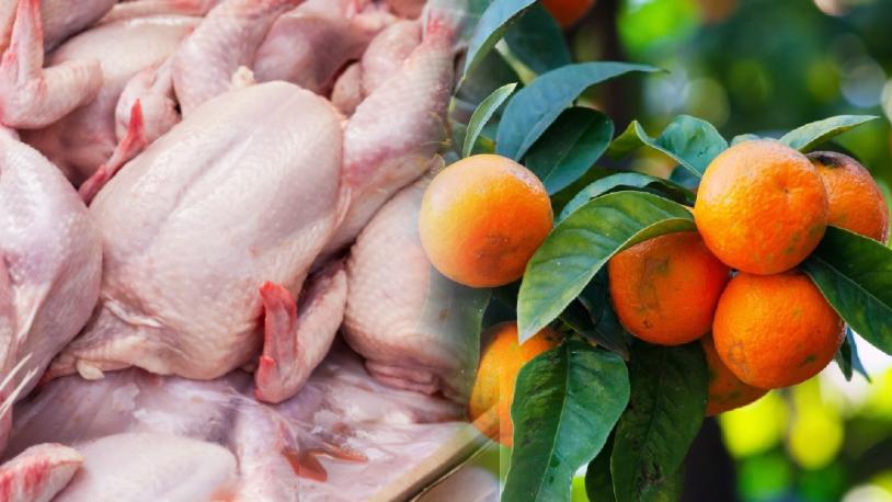 Rusya, 26 ton tavuk ve 40 ton mandalinayı geri gönderdi