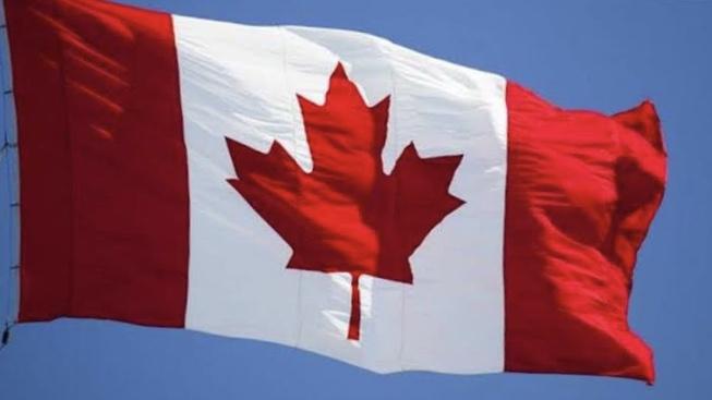 Kanada'da peçe takan kadınlar maske takmayacak