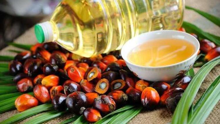 Tükettiğimiz Birçok Gıdanın İçinde Olan Palm Yağ Nedir?