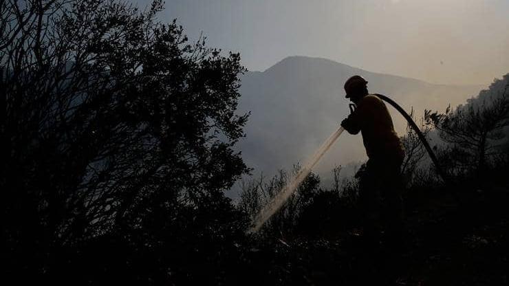Bir günde 12 kentte 19 orman yangını