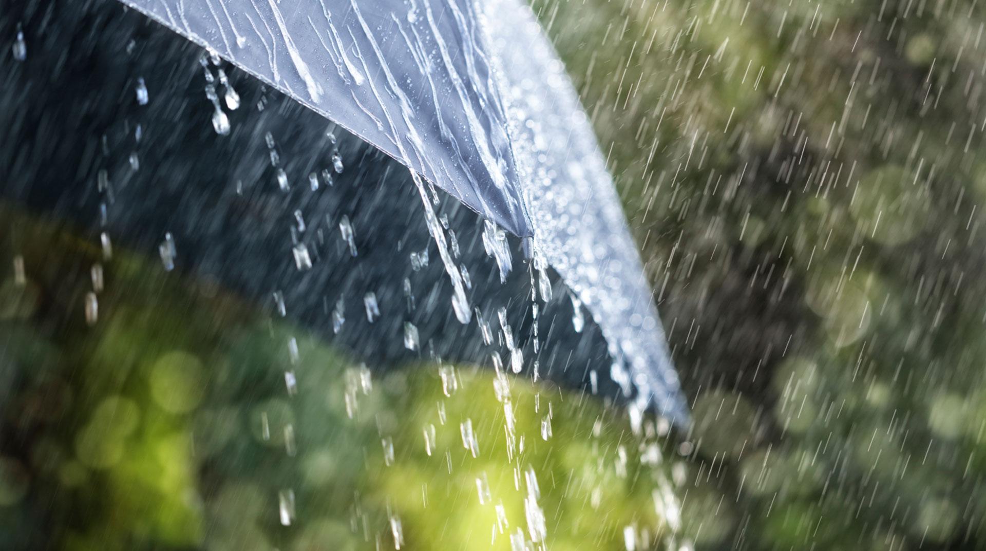 Doğu Karadeniz'de yağış uyarısı