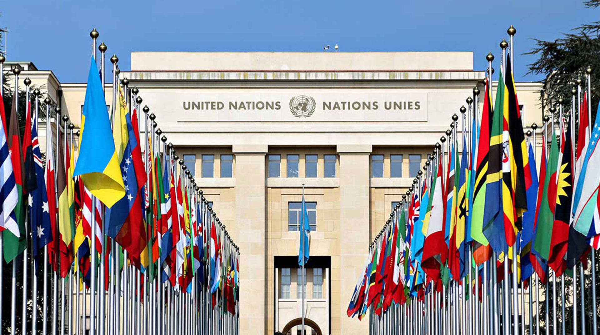 BM İnsan Hakları Konseyi 43. Oturum Askıya Alındı