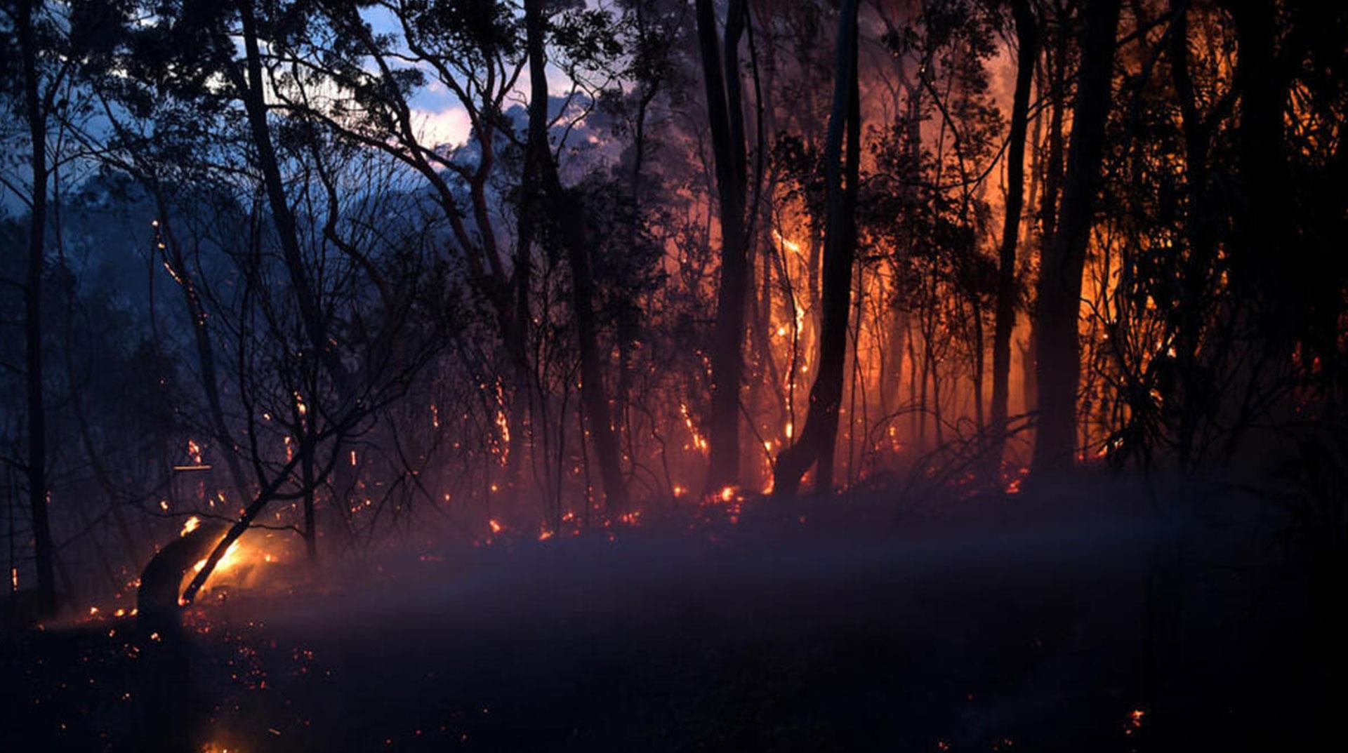 Avustralya'daki Orman Yangınları: 2 Ölü, 30 Yaralı, 7 Kayıp