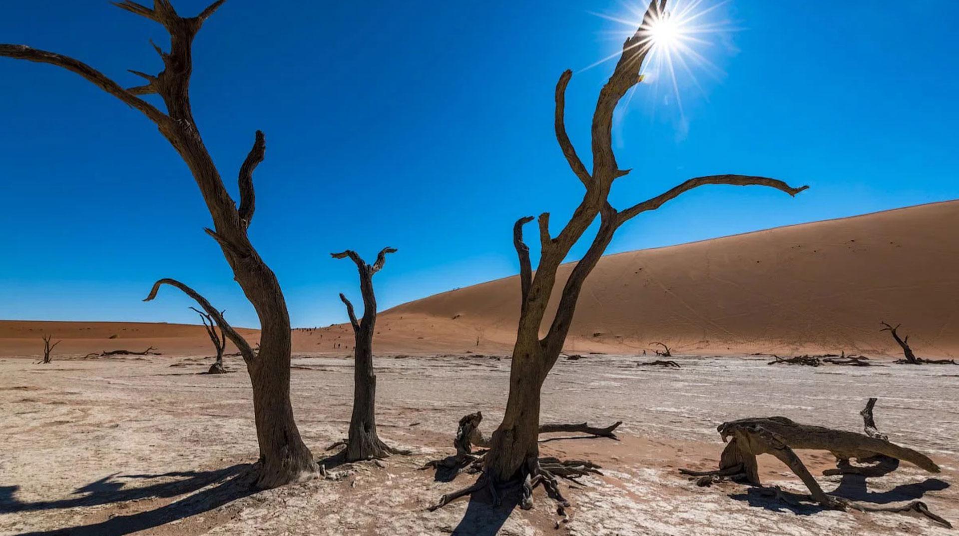 Son 10 yıl tarihin en sıcak 10 yılı oldu