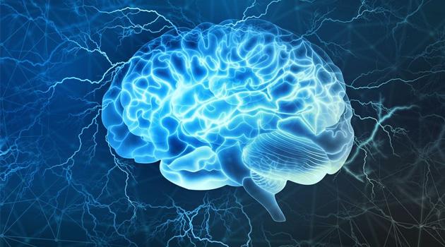 Araştırma: Beyinleri küçük olanlar davranış bozuklukları gösteriyor