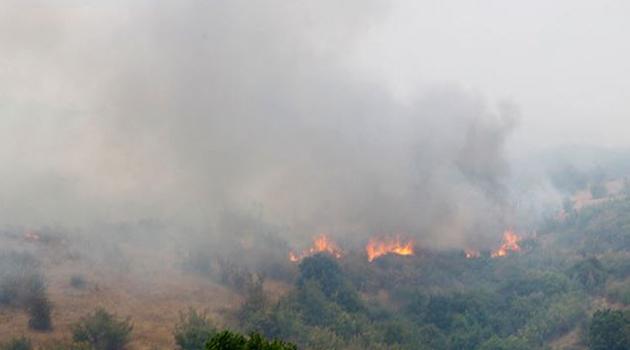 Bulgaristan Türkiye sınırındaki yangın söndürüldü