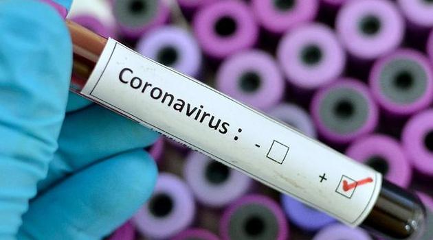 Cezayir ve Libya'da koronavirüs vakaları arttı