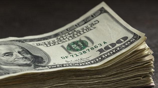 Dolar/TL 7,31'e yükseldi