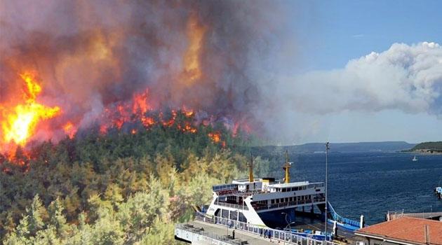 Bekir Pakdemirli: Gelibolu'da 300 hektarlık alan yandı