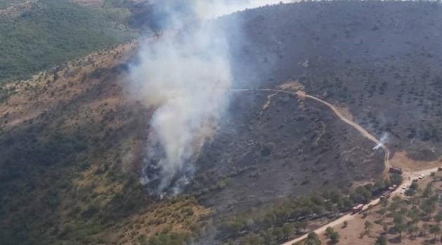 Balıkesir'deki yangında yaklaşık 30 dönüm alan zarar gördü