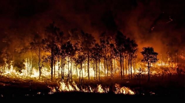 Avustralya'da 6 aydır süren yangınlar kontrol altına alındı