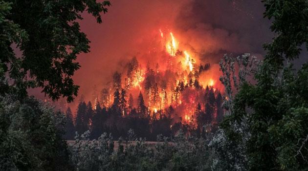 İçişleri'nden 'Orman Yangınları' genelgesi: Mangal ve ateş yakılmanın yasak olacağı yerler 15 Ağustos'a kadar belirlenecek
