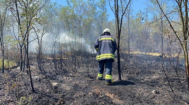 Düzce'de orman yangını: 4 hektarlık alan küle döndü