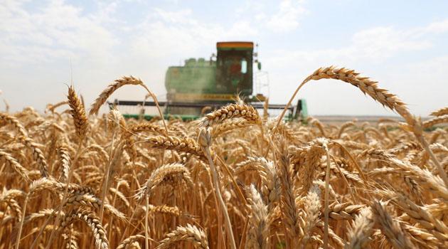 115 tarım ürününe ek vergi kondu