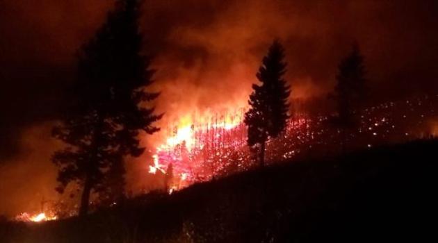 Trabzon'daki 68 yangın tamamen söndürüldü