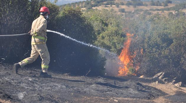 Çanakkale'nin Ezine ilçesinde 2 hektarlık alan yandı