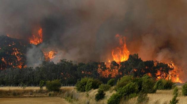 Avustralya yangınlarının boyutu: 1 yıllık karbondioksidin yarısı sadece birkaç ayda salındı