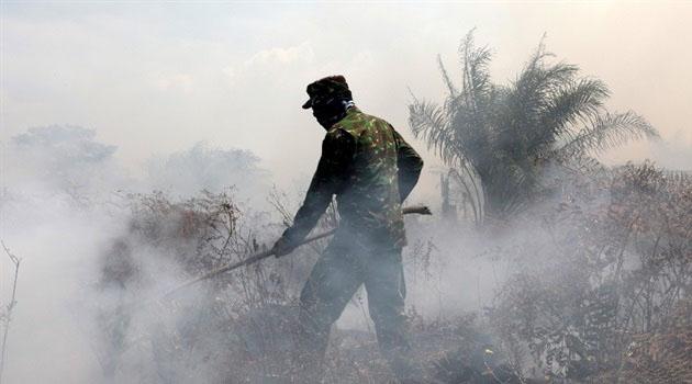 Endonezya'da orman yangınları devam ediyor: Yoğun duman nedeniyle uçak seferleri iptal edildi
