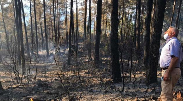 Mangal ateşi 46 dönüm araziyi kül etti