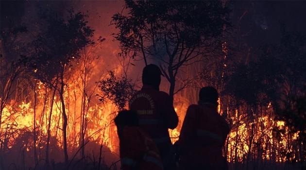 Endonezya'da 8 ayda 330 bin hektar orman kül oldu