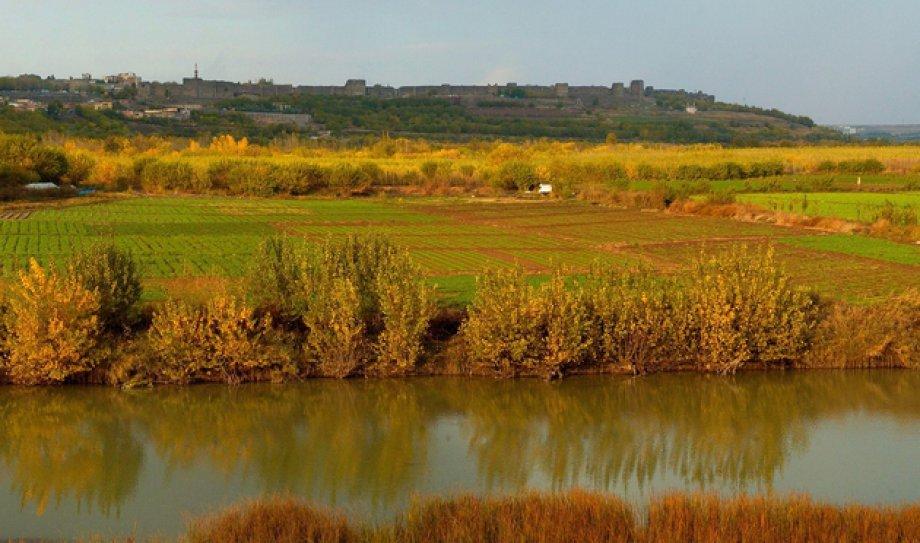 Aylar Sonra Diyarbakır'a Döndü