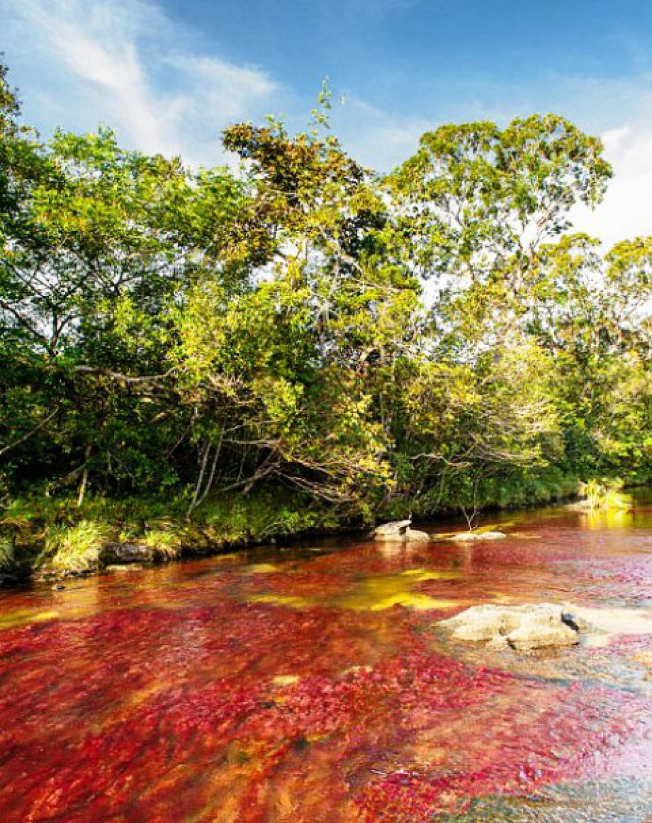 Dünyanın Güzel Nehirleri