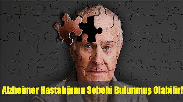Alzheimer hastalığının sebebi bulunmuş olabilir!