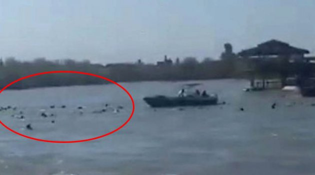 Dicle'de feribot battı: En az 40 kişi yaşamını yitirdi