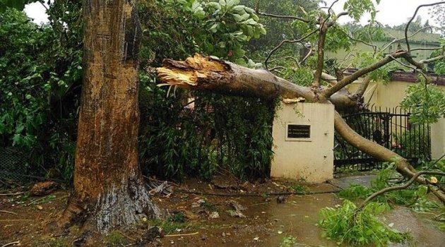 Hindistan'daki Fani Kasırgasında 8 Kişi Hayatını Kaybetti