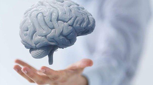 Metallerin Beyin Üzerindeki Etkileri