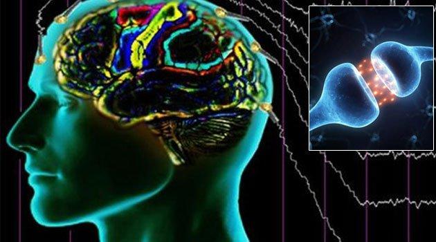 Rüya Esnasında Beyin Aktivitesi Kaydedildi
