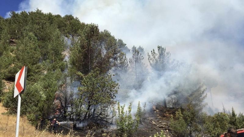 Kahramanmaraş'ta 10 hektarlık ormanlık alan yandı