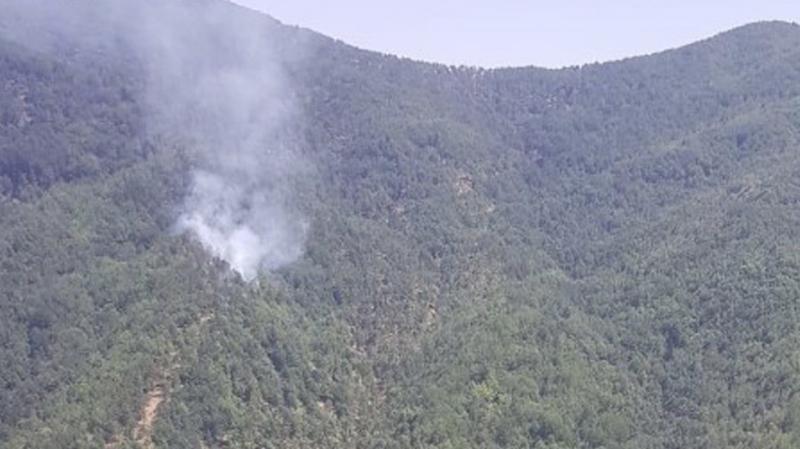 Hatay'da orman yangını: 1 hektarlık alan zarar gördü