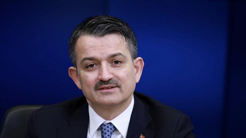 Tarım ve Orman Bakanı: Heybeliada'daki yangınla alakalı 3 gözaltı var