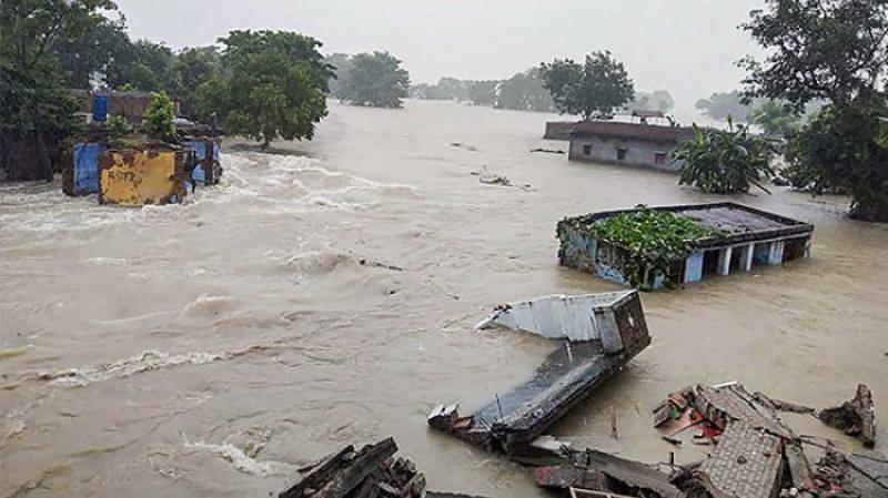 Hindistan'daki sellerde ölü sayısı 246'ya yükseldi