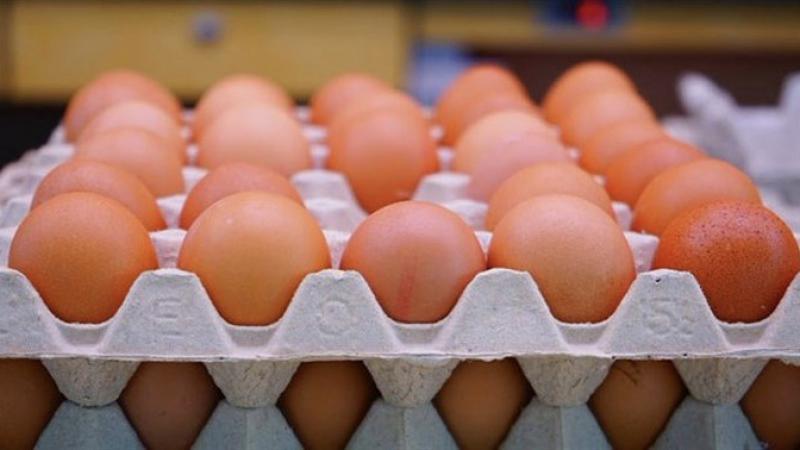 Yumurta fiyatlarındaki yükseliş devam ediyor: 1 ayda neredeyse yüzde 30 zam