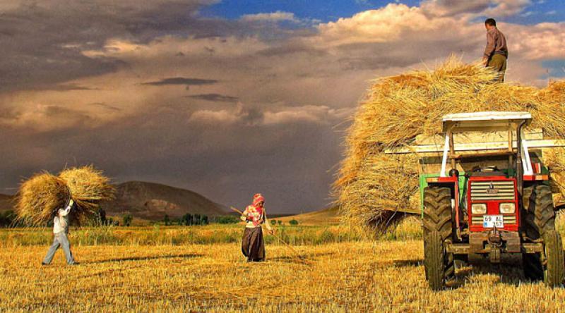 Çiftçi Kayıt Sistemi'ne başvuru süresi 1 Eylül'e kadar uzatıldı