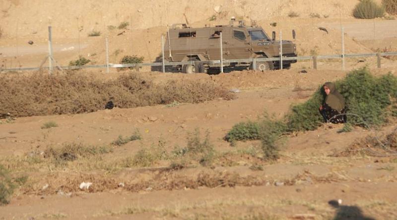 Siyonist İsrail Filistinlilerin tarım arazilerini tahrip ediyor