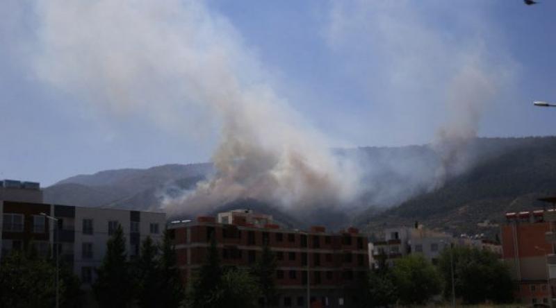 Hatay'da 4 farklı noktada orman yangını