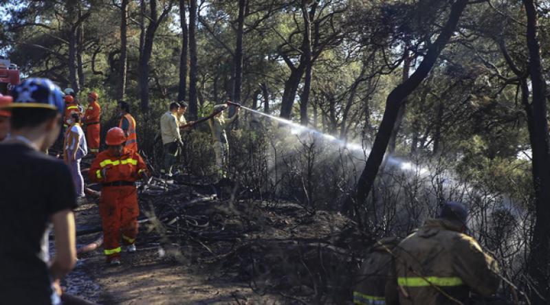 Heybeliada'da orman yangını!
