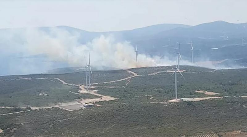 İzmir'de ikinci orman yangını
