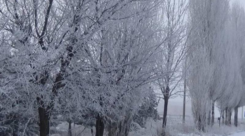 Kars eksi 11'i gördü