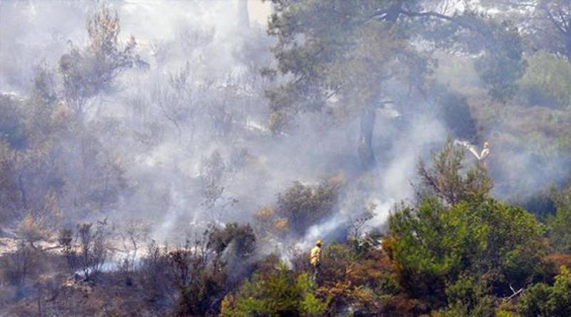 Manisa'da 3 gün süren yangında 300 hektarlık orman küle döndü