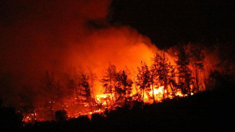Türkiye, 6 gündür yangınlarla mücadele ediyor: 4 ilde 9 yangın devam ediyor