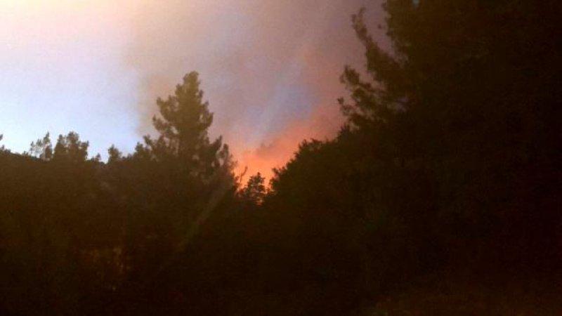 Kozan'da yangın nedeniyle köyler tahliye ediliyor