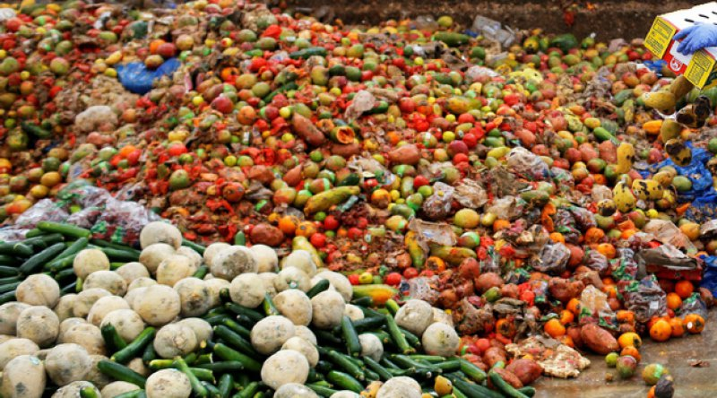 2019'da dünya genelinde 931 milyon metrik ton gıda israf edildi