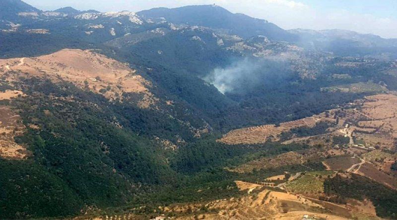 İzmir'de orman yangını kontrol altına alındı