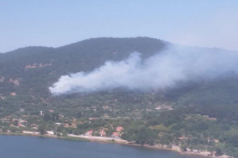 İzmir'in Ödemiş ilçesine 'de orman yangını