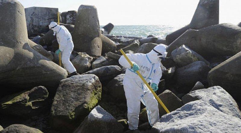 Japonya'da 10 yıl önceki depremde kaybolan kadının ceset kalıntıları kıyıya vurdu