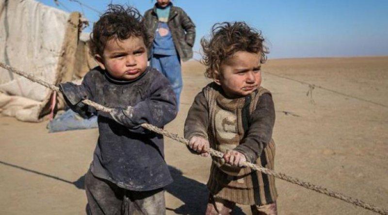 Sivil toplum kuruluşları, AB'den Afgan sığınmacıları ülkelerine geri göndermeyi durdurmasını istedi